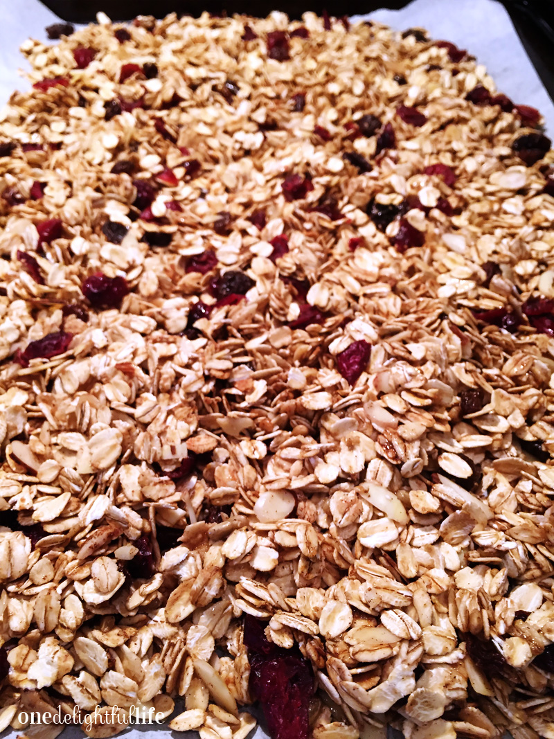 homemade-granola-with-cranberries-and-raisins5