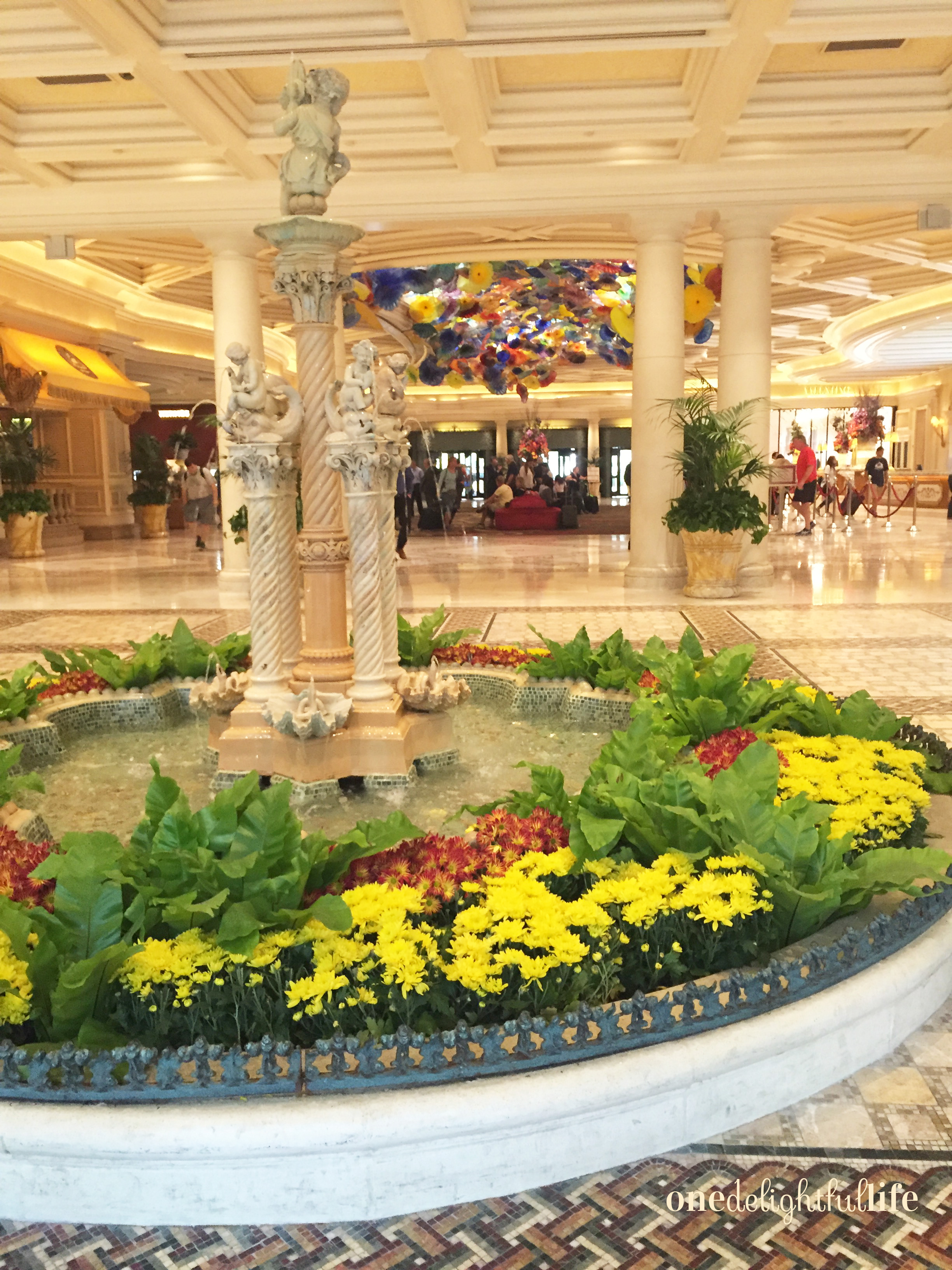 This water feature divides the hotel lobby check in area from the conservatory.