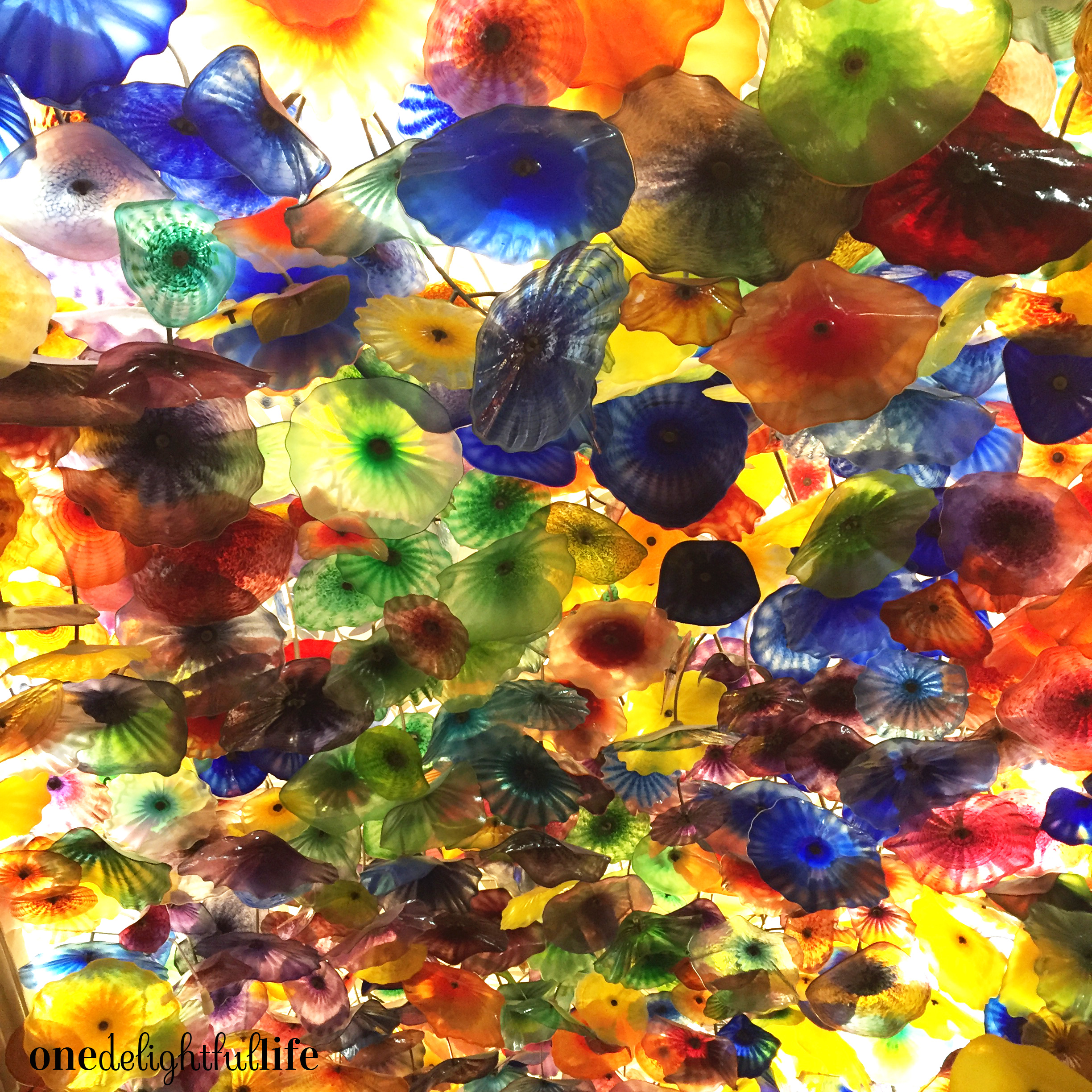 The lobby ceiling is feet of breathtaking hand blown glass.