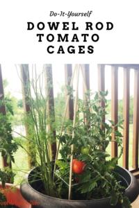 tomato cage