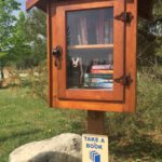 The Power of Sharing Books: Little Free Library