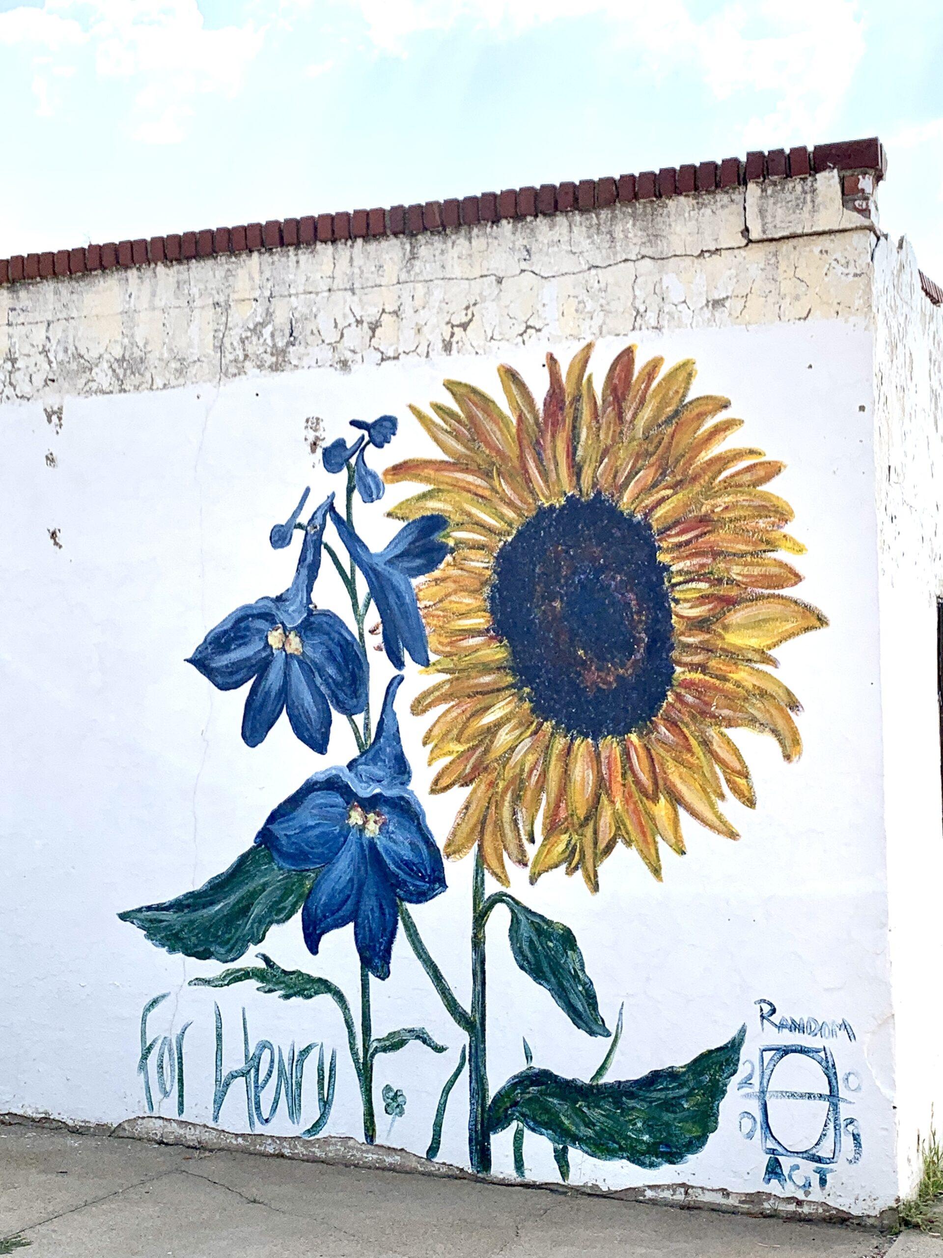 Hays Street Art